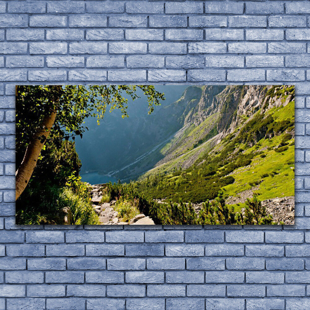 Print on Glass Wall art 140x70 Picture Image Mountain Mountain Mountain Forest Nature dd4d2c