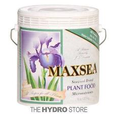 Maxsea 16-16-16 ALL PURPOSE Plant Food 6 LB - Water Soluble Seaweed nutrients
