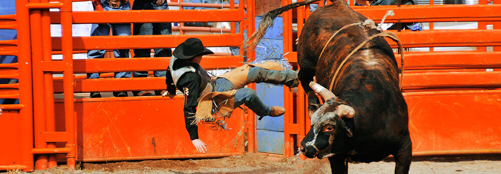 Pro Bull Riding (PBR): Real Time Pain Releif Velocity Tour