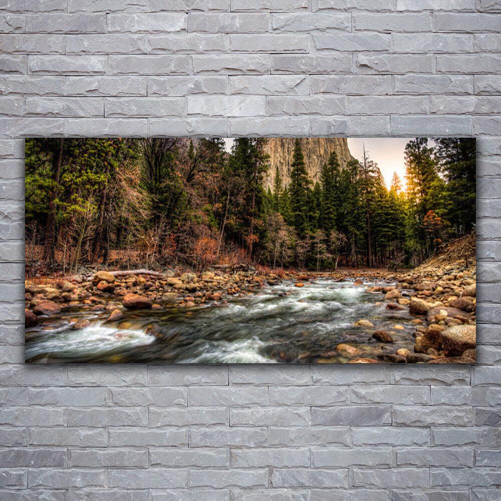 Photo sur toile Tableau Image Impression 120x60 Nature Forêt Mer