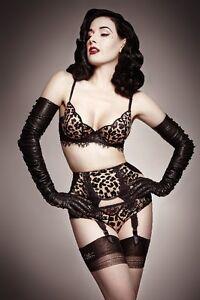 Dita Von Teese плакат Playboy Penthouse эротическое модель ню 04 24