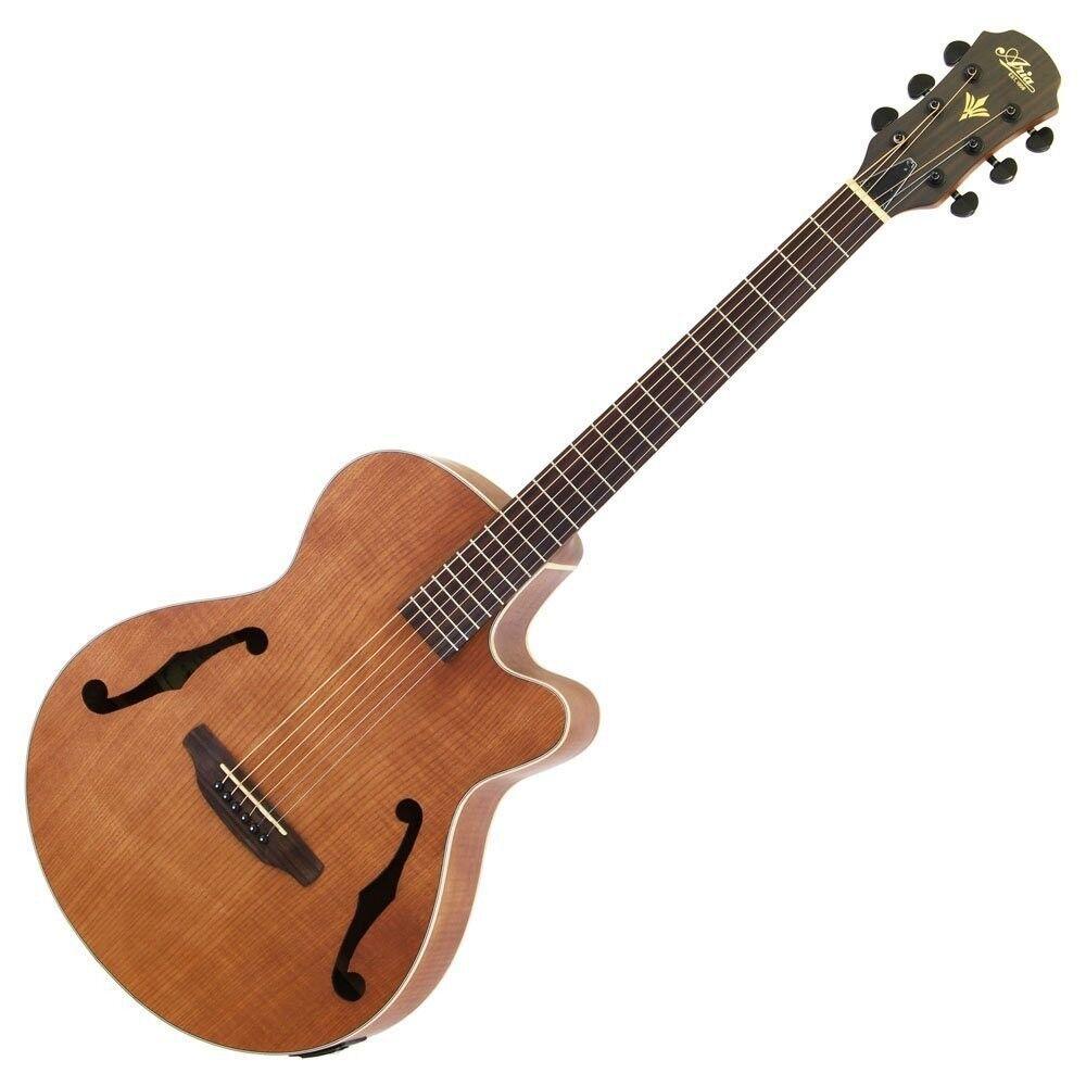 Neu Aria Natürlich Hohl E-Gitarre FET-F1 mit Weiche Tasche Japan Import Ems
