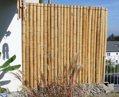 Bambusstangen Bambus Bambushalm Bambusrohr Bambuslatte 25 Stk 3m Ø 3-5 cm