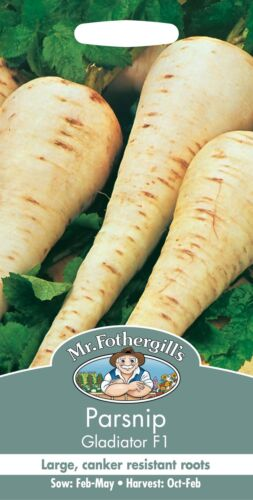 Parsnip Gladiator Mr Fothergills Pictorial Packet Vegetable 200 Seeds