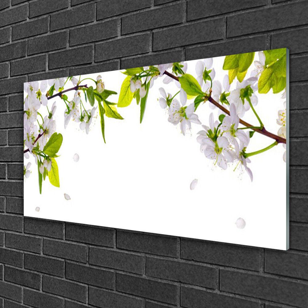 Image sur verre Tableau Impression 100x50 Nature Fleurs Feuilles