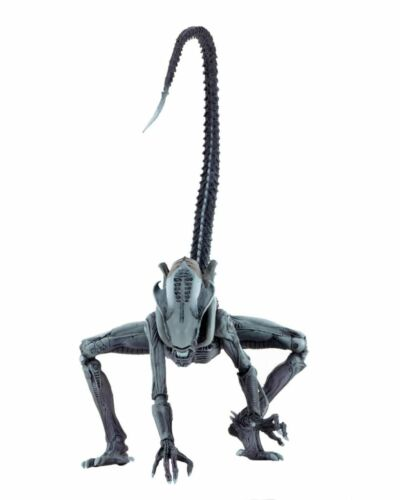 Aliens vs Predator Arcade Arachnoid Xenomorph Figurine NECA En Stock!