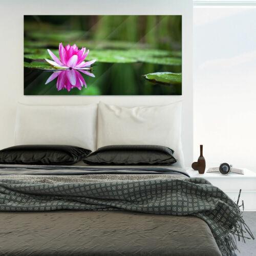 Glasbild Digitaldruck auf Glas Motiv Seerose 1 keine Folie 7 Größen