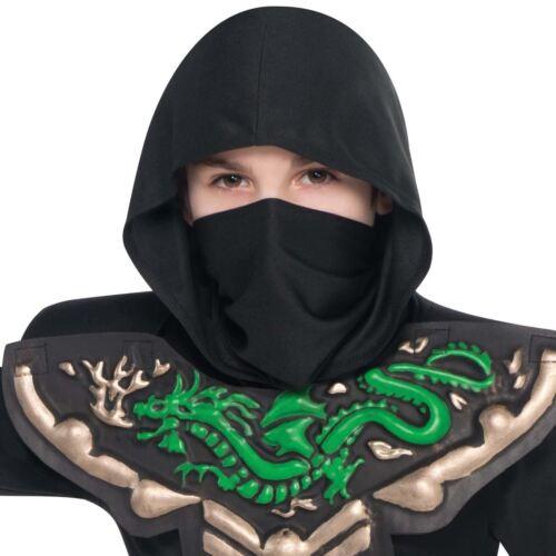 Ninja Dragon Warrior Master Boys Book Week Samurai Arts Fancy Dress Costume