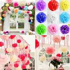 "Paper Tissue Pom Poms 8"" 10""Wedding Party Flower Pompom Ball Decoration"