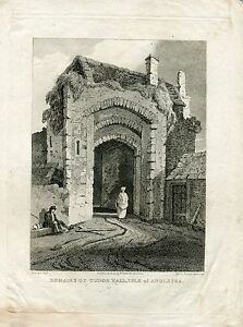 Remains-Of-Tudor-Hall-Isle-Of-Anglesea-Engraving-By-Francess-Hawksworth