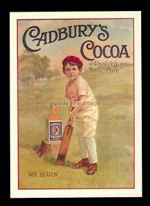 "ad3930 - Cadbury's Cocoa - ""Not Beaten"" Boy Cricketer - Modern Advert postcard"
