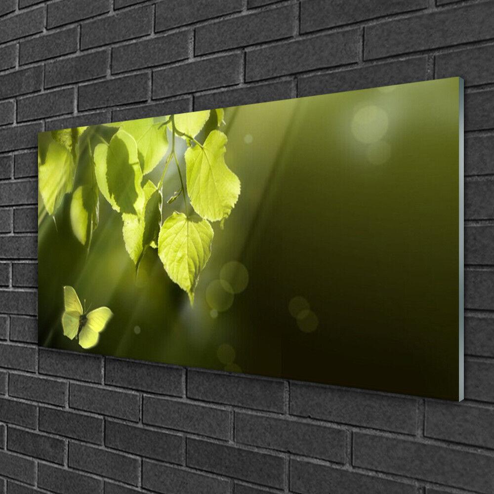 Tableau sur verre Image Impression 100x50 Nature Feuilles Papillon