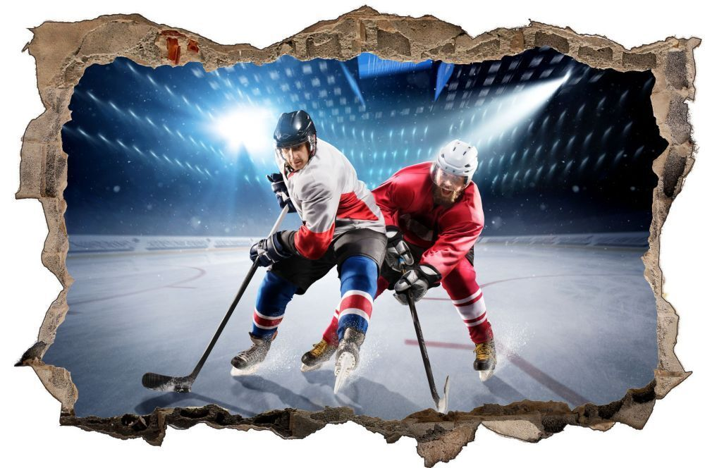 Hockey sur sur Hockey glace Stade Mural Sticker Autocollant d0617 86faff