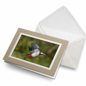 Greetings-Card-Biege-Great-Spotted-Woodpecker-3325