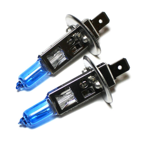 Renault Scenic MK2 H1 H7 501 55w Super White Xenon High//Low//Side Headlight Bulbs