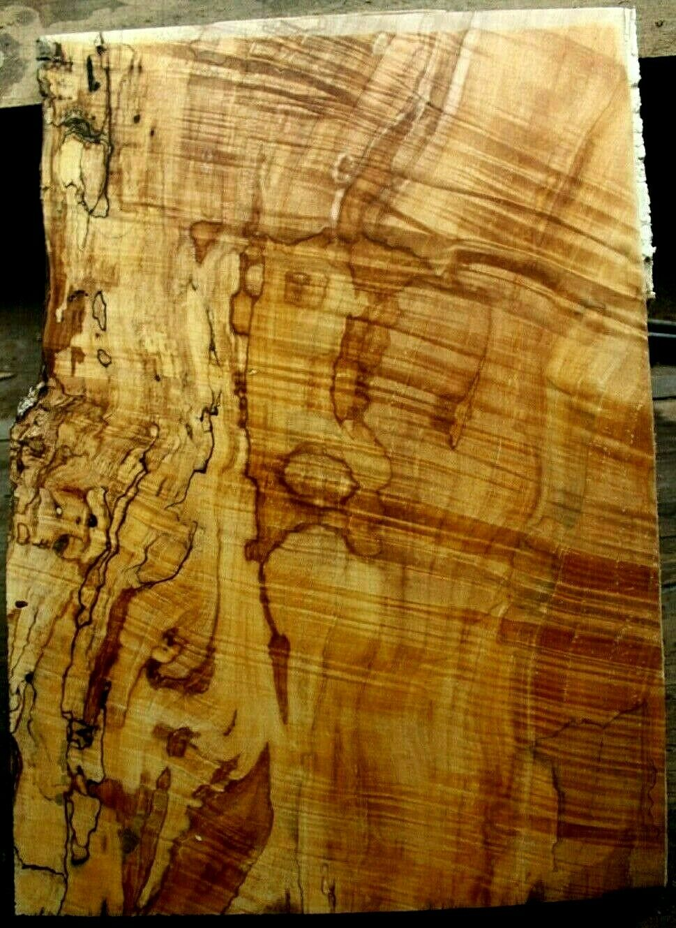 1pc 7 8  thk curly spalted figurot ambrosia maple carved top guitar bass 982