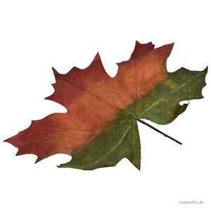 Das Bild Wird Geladen Ahornblatt XXL Gruen Orange Rot 72x70cm L110cm Deko