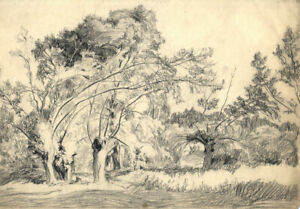 Hans-James-Berthold-b-1884-Early-20th-Century-Charcoal-Drawing-Woodland