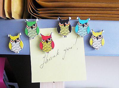 Six grumpy owl fridge,memo,decor strong magnets. Lovely little gift idea