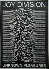 JOY DIVISION Ian Curtis Unknown Pleasures 33 x 23 Inch Black And White POSTER
