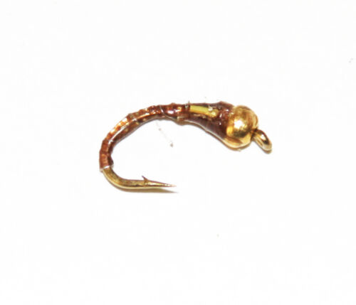 Gold Head Epoxy Buzzers Trout /& Grayling Fly Fishing Flies You Choose Pack Trout