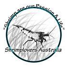 shrimploversaus