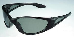 Polarisations Brille 1, Polbrille, Sichtfenster im Bügel, Fischer-Sonnenbrille