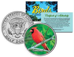 CARDINAL-BIRD-JFK-Kennedy-Half-Dollar-US-Colorized-Coin