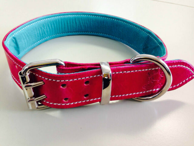 Large Pink Leather Dog Collar with Soft Turquoise Leather Padded Inner Lining