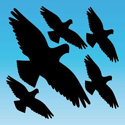 Neue Mode Warnvogel Set M Schwarz Habicht Aufkleber Tattoo Vogel Fenster Glas Schutz Folie