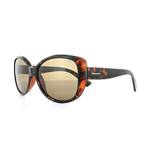 Polaroid Sunglasses PLD 4031 S Q3V IG Havana Brown Polarized ... 354f7e5c5b2