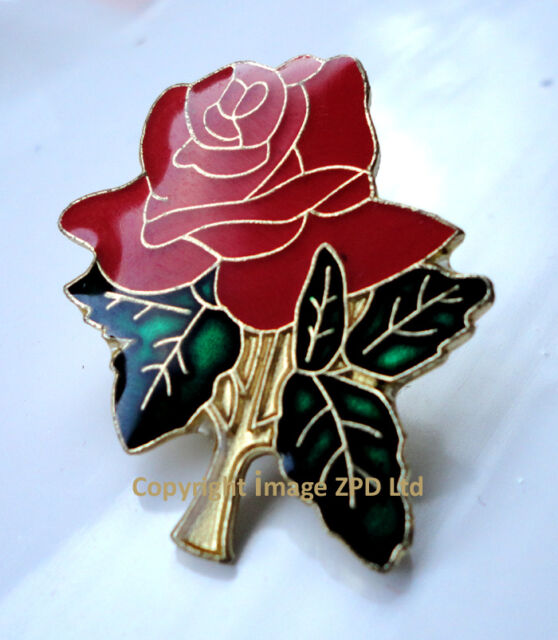 ZP138 Gloss Enamel Red Rose Lancashire Garden Pin Badge Brooch English Flower