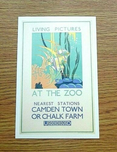 1928 LONDON UNDERGROUND POSTER POSTCARD LIVING PICTURES AT THE ZOO ~ SMALL