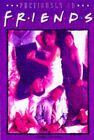 Previously on  Friends : The Official Companion to Seasons 2 and 3 by Penny Stallings (Paperback, 1997)
