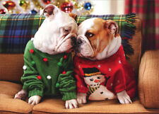 Christmas Bulldogs In Sweaters Pop Up Stand Out Dog Christmas Card