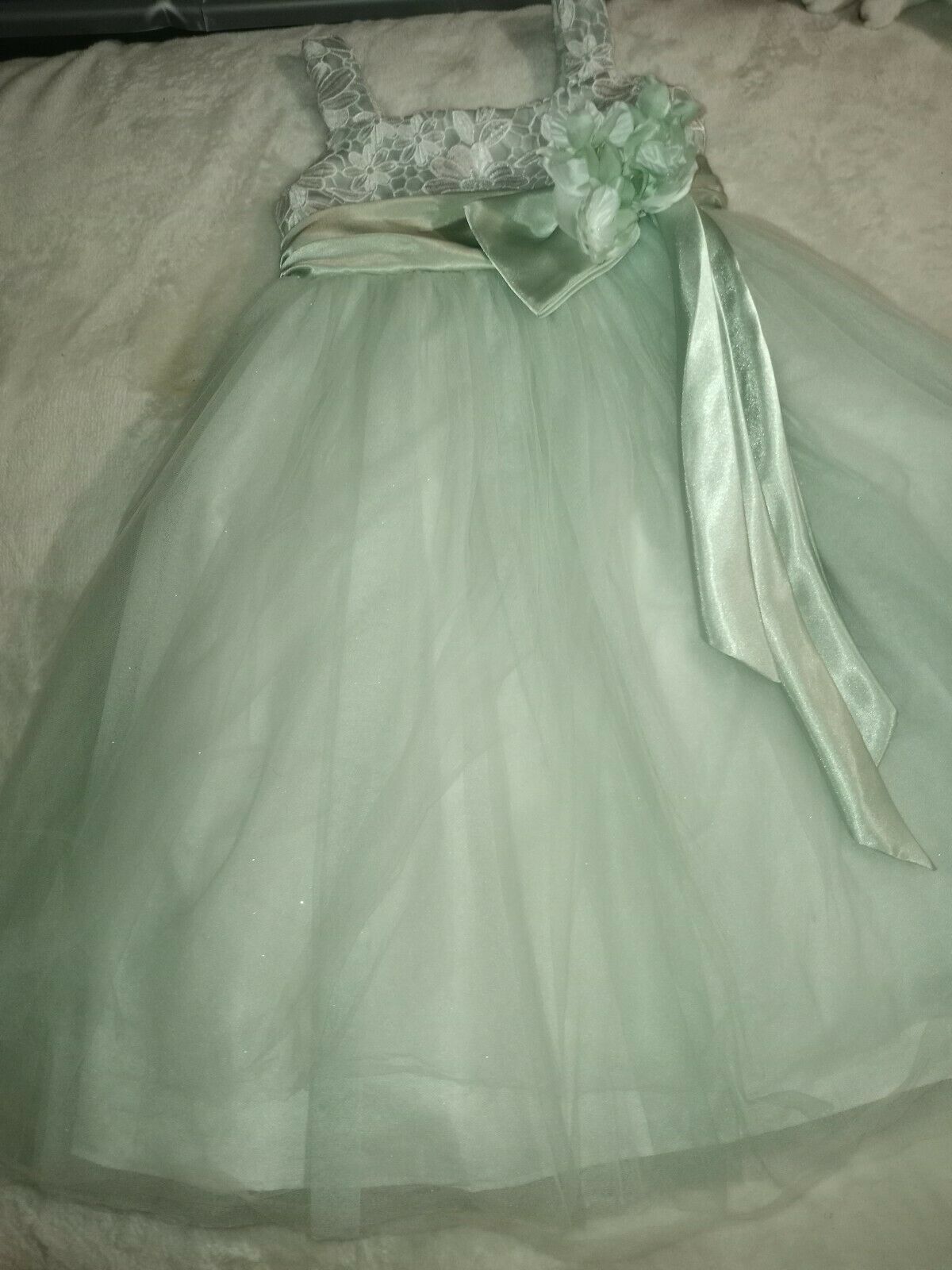 Chantilly Place Formal Tulle Mint Green Dress 6