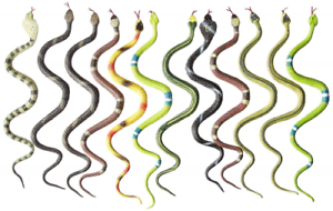 "12 Rubber RAINFOREST Snakes//14/"" Rain Forest Snake Figures//PARTY Favors Toys"