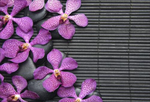 16 dimensions Fleurs réf 1431 Stickers muraux autocollant déco