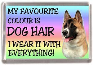 Akita-Dog-Fridge-Magnet-034-My-Favourite-Colour-is-Dog-Hair-034-by-Starprint