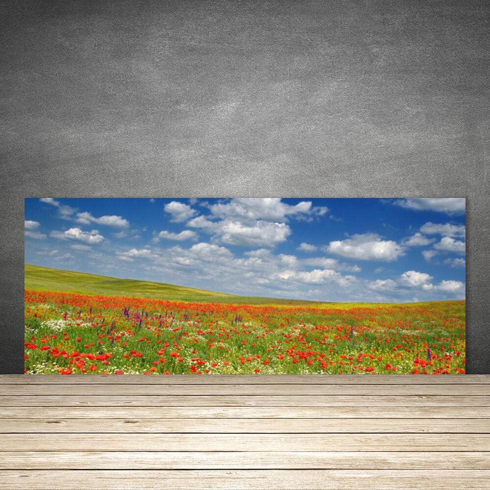 Crédence de cuisine en verre Panneau 125x50 Paysage Fleurs Prairie