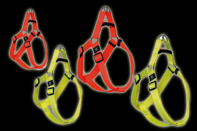 Art Sportiv Plus Reflex Step Hunde Geschirr Nylon reflektierend - orange S-M-L
