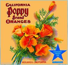 Redlands California Poppy #1 Orange Citrus Fruit Crate Label Vintage Art Print
