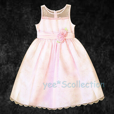 Pink Embroidery Lace Flower Girl Wedding Pageant Formal Dress Age 12M 18M 2T 3 4