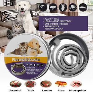 Collar-de-pulgas-natural-para-perros-Proteccion-contra-pulgas-y-garrapatas-dur