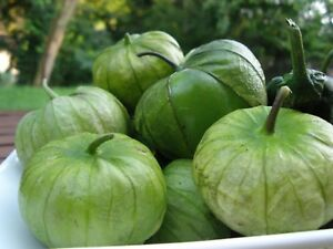 100-Tomatillo-Verde-Seeds-Heirloom-Variety-2018-Seeds-1-69-shipping-order