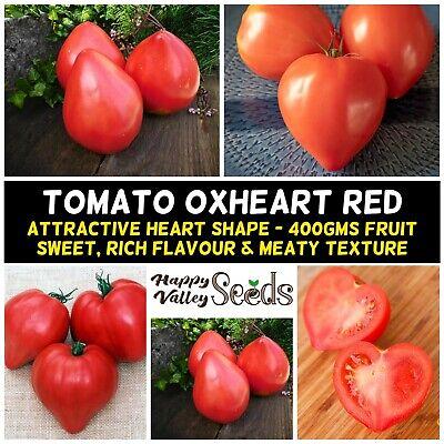 OXHEART PINK TOMATO 15 Seeds UNUSUAL BIG HEART SHAPE 400g FRUIT summer vegetable