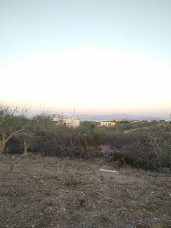 Lomas del Centenario, Junto a Palo Verde