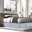 Premium-Luxury-Dust-Ruffle-Brushed-Microfiber-Pleated-Tailored-Bed-Skirt-14-Drop thumbnail 62