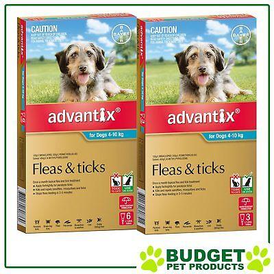 Advantix For Dogs Medium 4-10kg 9 Pack