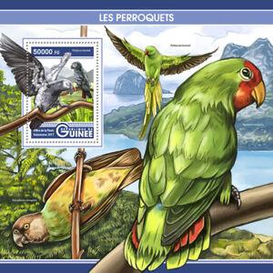 Guinea-2017-Gomma-integra-non-linguellato-pappagalli-pappagallo-grigio-timneh-4v-M-S-perroquets